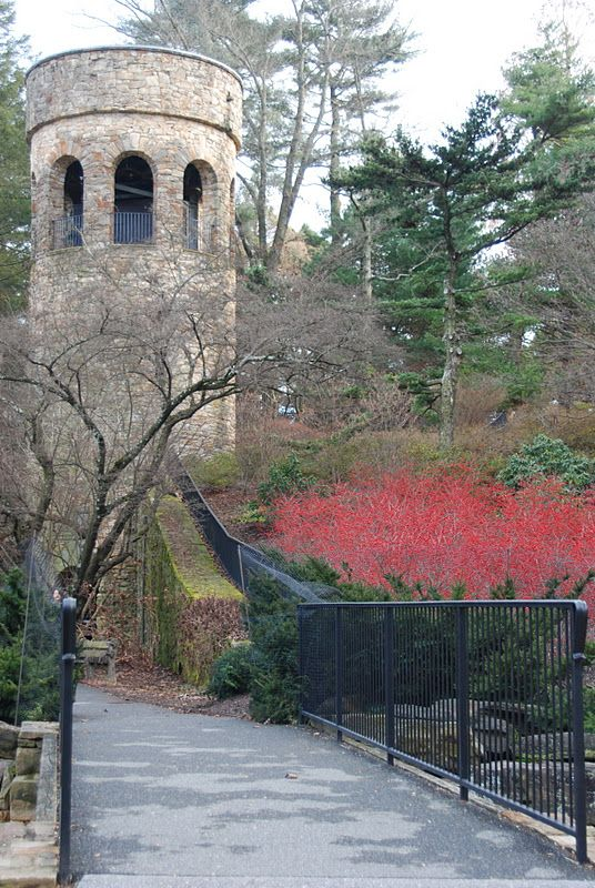 Chimes Tower with the famous carillon bells at Longwood Gardens, US. Winterberry holly in front for the season.
