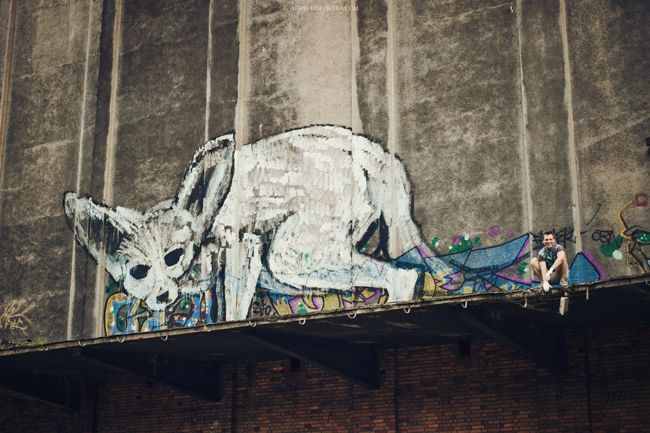 Skont - LN group Cyrograff Wrocław - graffiti, mural, malarstwo, rysunek, airbrush i aerograf