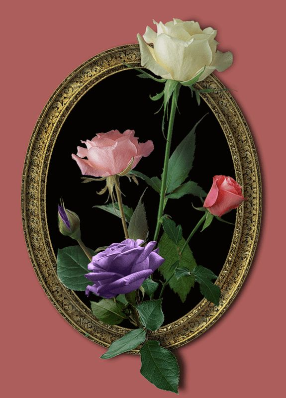 словам красивые анимация цветов родился одной почкой