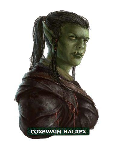 f Half Orc Rogue Pirate coxswain