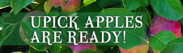 County Line Orchard - Northwest Indiana Apple Orchard & Farm - Closet to Chicago