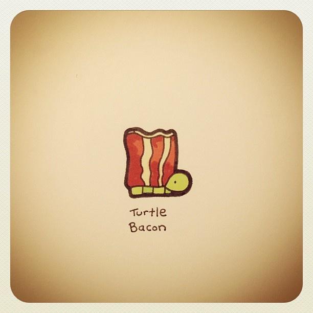 Turtle Bacon #turtleadayjune - @turtlewayne- #webstagram