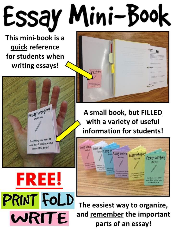 best expository writing images school beds and  224 best expository writing images school beds and english language