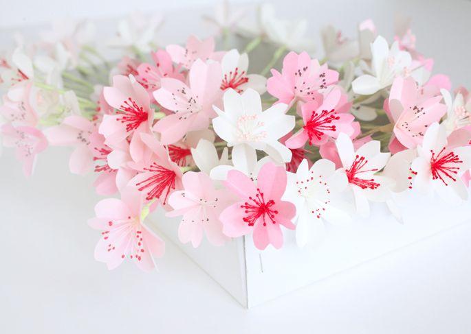 Fleurs de cerisier roses et blanches avec pistils - Adeline Klam