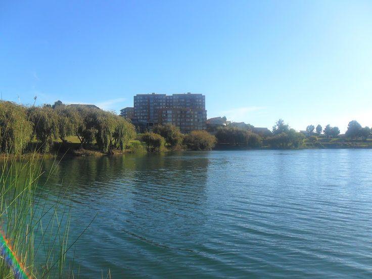 Laguna Redonda, Concepción.