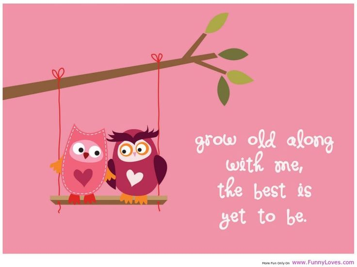 Owl Valentineu0027s Day Printable