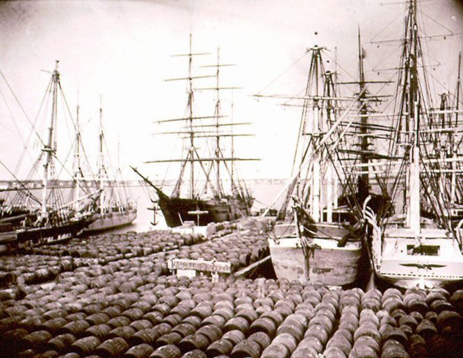 Whaling Ships of New Bedford MA 1870