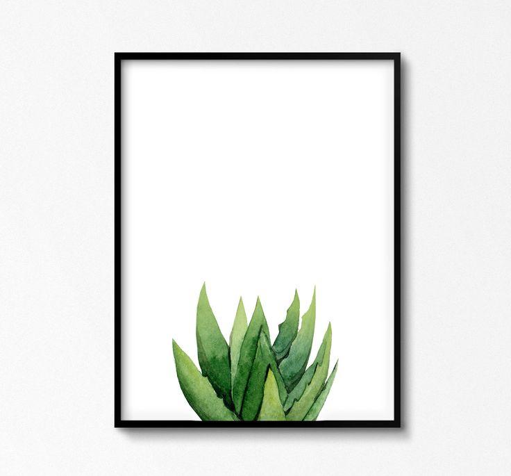 Mejores 8 imágenes de Cacti and succulents en Pinterest | Arte de ...