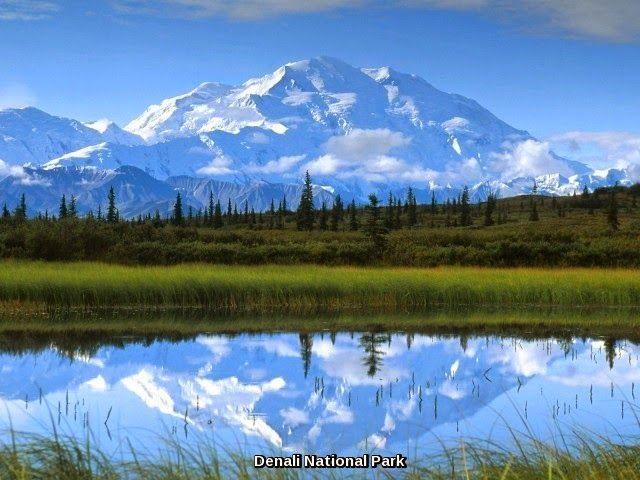 Denali National Park is one of major attractions of ALaska