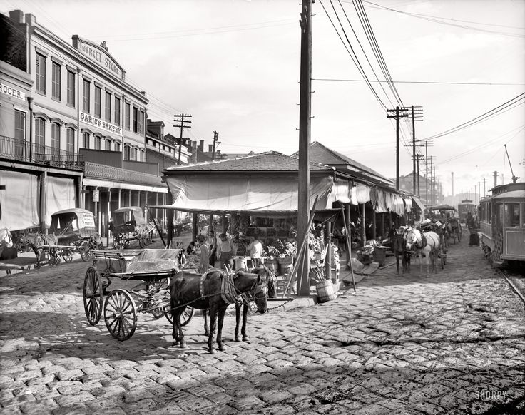 """the history of new orleans a city in southern louisiana While the """"cities of the dead are alluring, they can be dangerous  go on a private tour of a famous new orleans city of the dead with riverbend limousine ."""