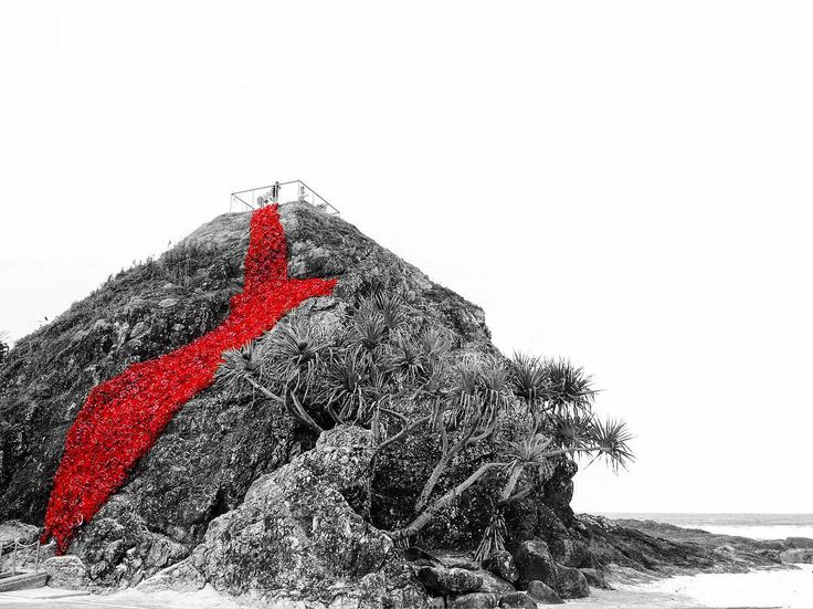 Elephant Rock 2016 #anzac #anzacday2016 #currumbin #currumbinbeach #elephantrock #beach #instabeach #weekend #australia #seeaustralia #australiagram #proud #aussie #swell #sculpture #swell2016 #beautiful #goldcoast #visitgoldcoast #qld #queensland #currumbinlife by krysthommo http://ift.tt/1X9mXhV