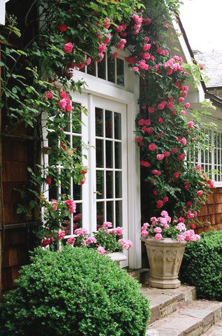 Breathtaking pink climbing roses Fritz & Gignoux | Landscape Architects