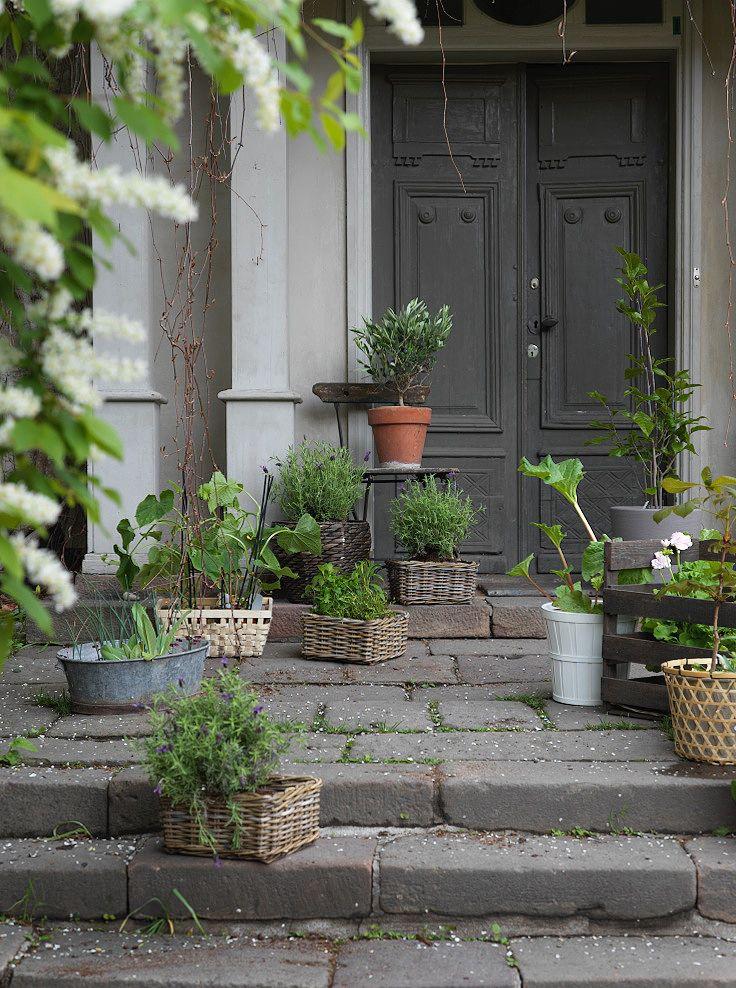 Krukväxter är vackert att placera ut på ett välkomnande sätt runt entrén. Ett litet kastanjeträd i en HÖJDARE korg, rabarber i en KALASA kruka, magnolian står stadigt i MANDEL kruka, gurkplantor i KNARRA korg, och lite andra kryddor och lavendel trivs utmärkt i BYHOLMA korg.