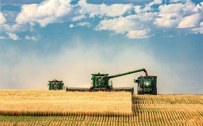 Scarica sfondi traktori, raccolta, harvester, vendemmia, trattori