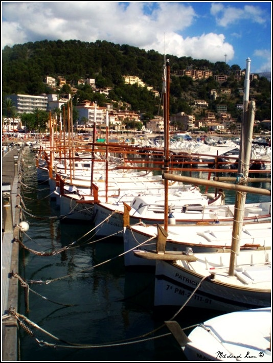 The local fishing boats in the harbor in Port de Soller