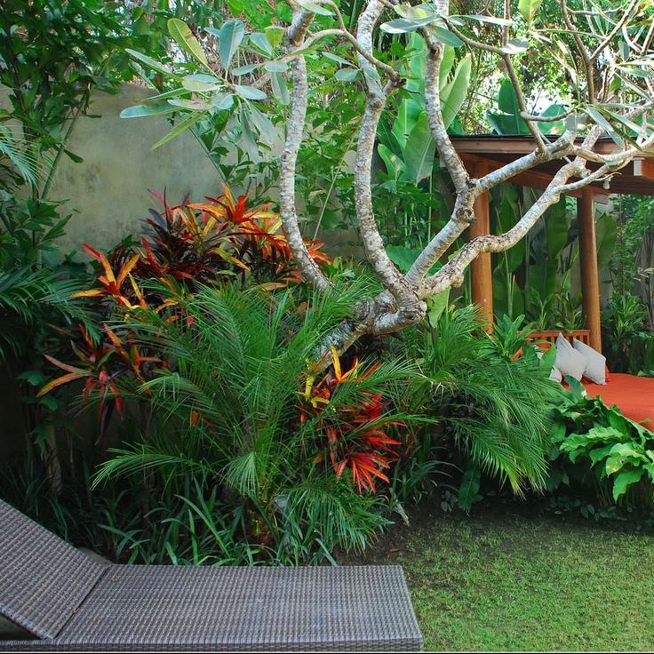 Best 25 tropical garden design ideas on pinterest for Tropical landscape