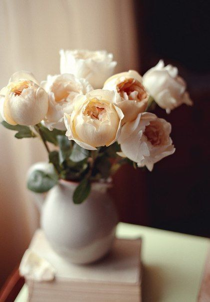 http://aliexpressfashion.tk/ Пионы, они чудесны, нежность и красота