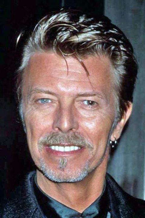 David Bowie an iconic musician - RIP 10/01/16.