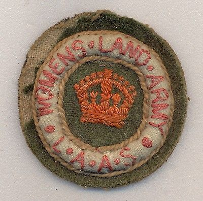Womens Land Army Ambulance Service Cloth Arm Badge | eBay