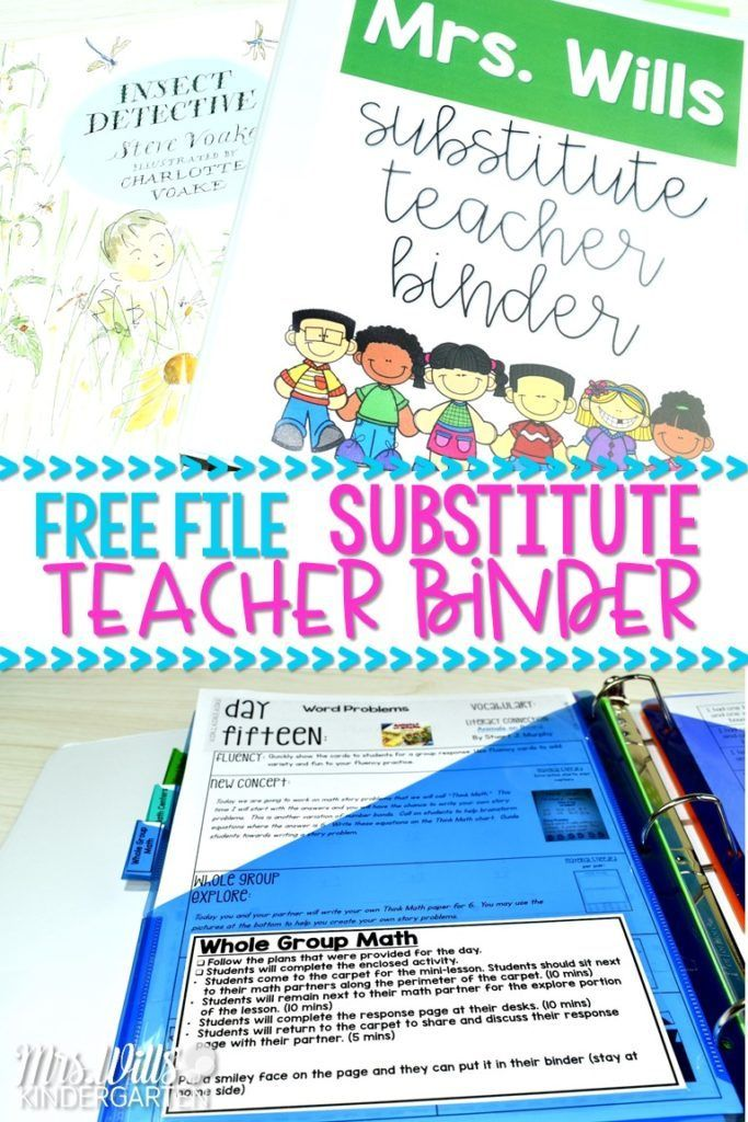 Education System Sub Plans Template Free For Emergency Substitute T Finans