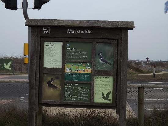 Photo of RSPB Marshside notice board taken by me used on their Tripadvisor page
