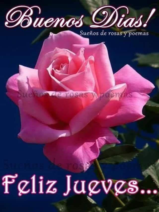 Pin by Maria Martinez on amor | Good night all, Good morning, Good night