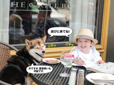 現在、話題のブログ本としてヒット中の写真集「ことばはいらない」。その主役である柴犬Maruと、弟で2歳児の一茶がエル・オンラインのため特別に地元ミシガンの大自然の魅力を紹介!