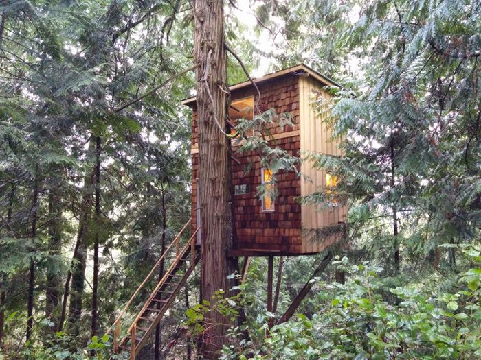 Nice Tree Houses 158 best the treehouse scrapbook images on pinterest | treehouses