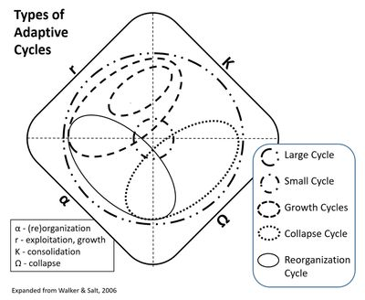 14 best The Adaptive Cycle and Forest Succesion images on
