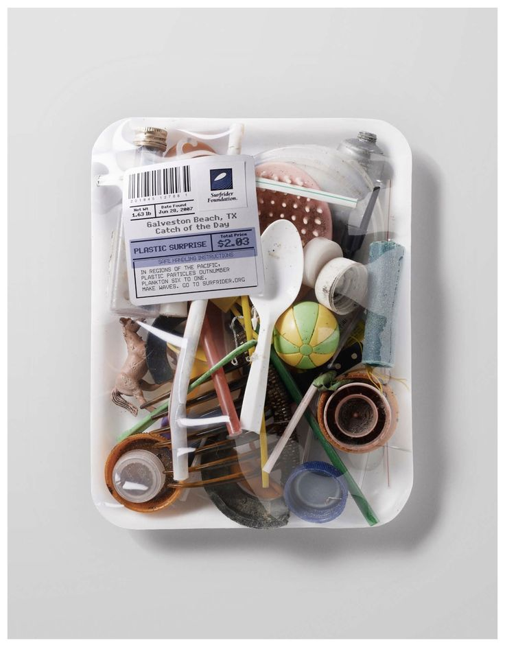 Catch of the Day: Plastic Surprise. Please recycle! And throw your trash in the can, not on a beautiful beach. Litter harms everyone.