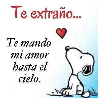 Romita,mi perrita linda,t extraño mucho ...siempre t recordaré,gracias x todo lo q m diste...t amamos!!!♥