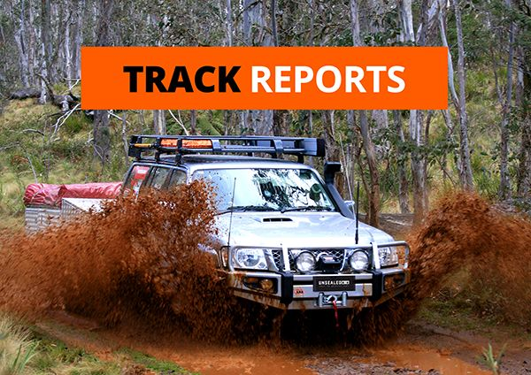 013_Track Reports