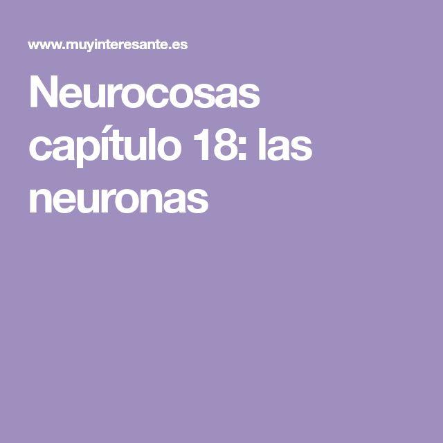 Neurocosas capítulo 18: las neuronas