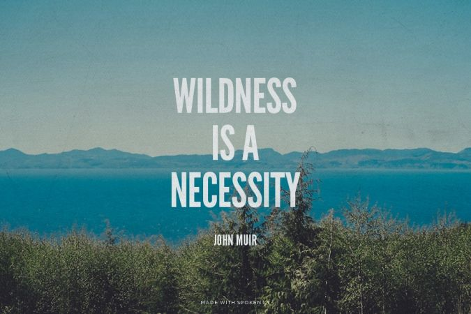 WILDNESS IS A NECESSITY - JOHN MUIR