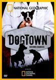 National Geographic: Dogtown - Second Chances [DVD]