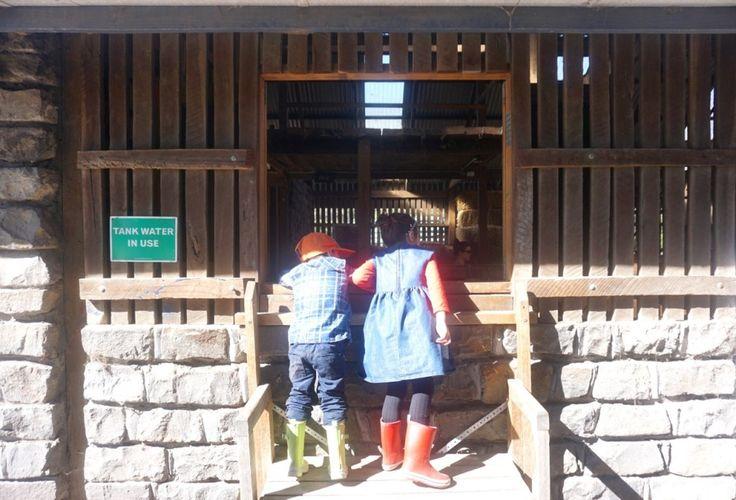 HOT: Collingwood Children's Farm, 18 St Heliers St, Abbotsford http://tothotornot.com/2012/07/hot-collingwood-childrens-farm-18-st-heliers-st-abbotsford/