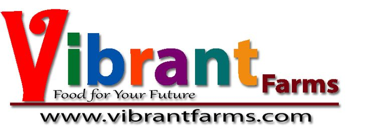 Vibrant Farms logo - the farm is located in southwestern Ontario in Baden. Raising organic grass fed beef & pastured poultry. www.vibrantfarms.com