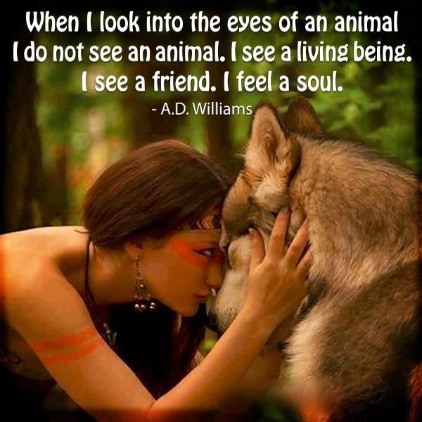 When I look into the eyes of an animal I do not see an animal, I see a living being, I see a friend. I feel a soul.