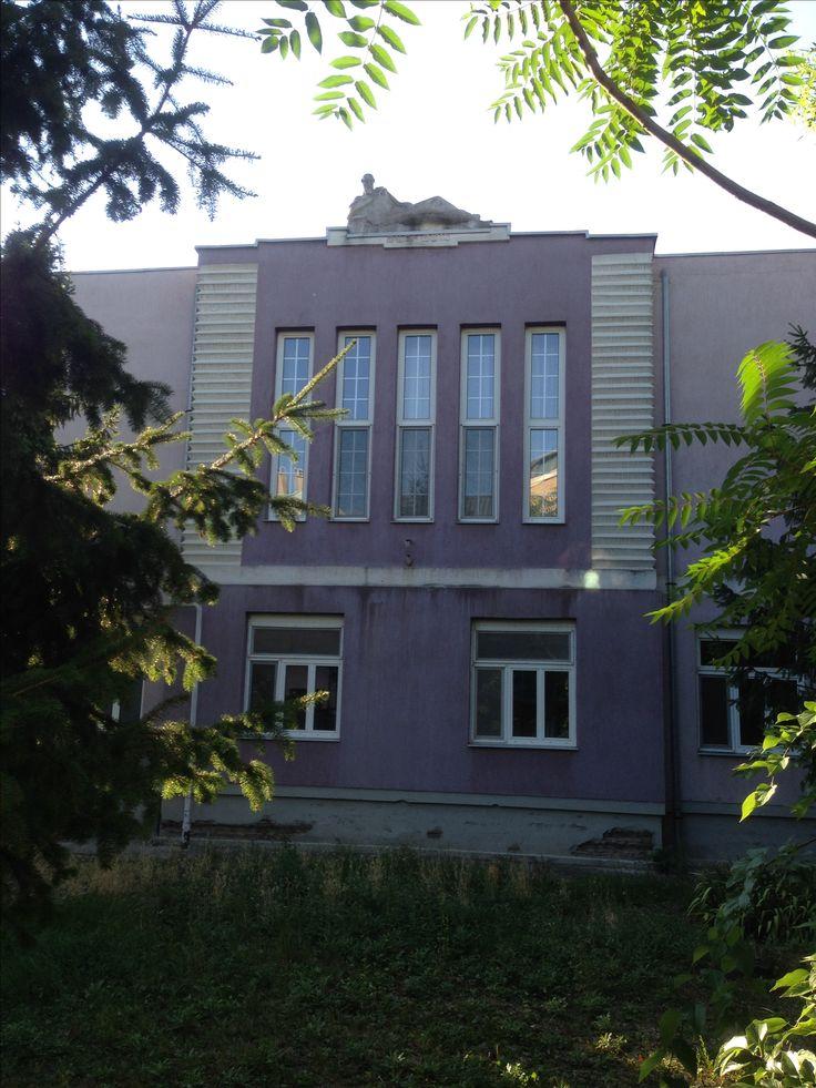 """A békéscsabai Izraelita Szentegylet 1918-ban javaslatott tett egy otthon létesítsére. Tevan Rezső békéscsabai építész tervei alapján épült ház egyike a két háború közt épült kis számú, de színvonalas modern épületnek. A középrizalitot Kapitány József szobrászművész alkotása, az """"Agg"""" című szobor koronázza, a szobor Mózest ábrázolja. Az épület, sajnos már üresen áll. A különleges homlokzatú modern épület egyelőre nem áll védelem alatt."""