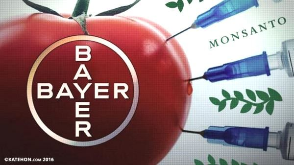 Слияние чудовищ: Bayer купила Monsanto. Производители ядов и наркотиков  Подробнее в источнике: http://sneg5.com/obshchestvo/ekonomika/sliyanie-bayer-kupila-monsanto.html