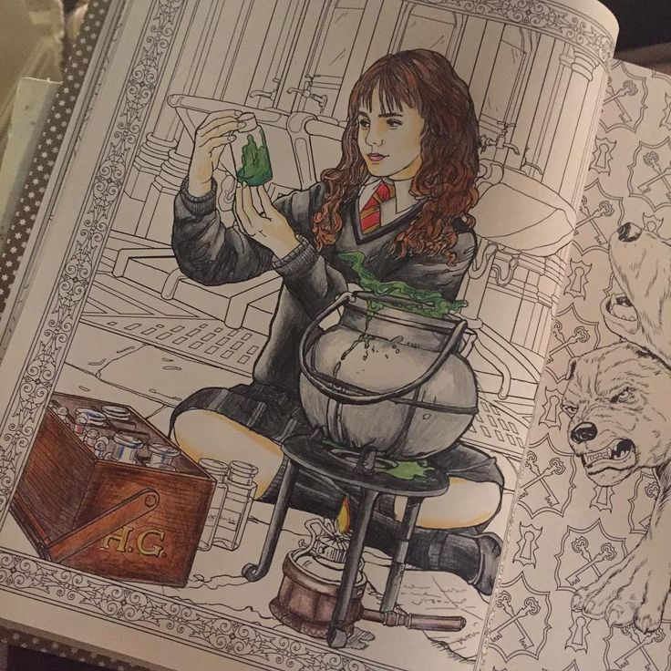 Harry Potter Coloring Book Books