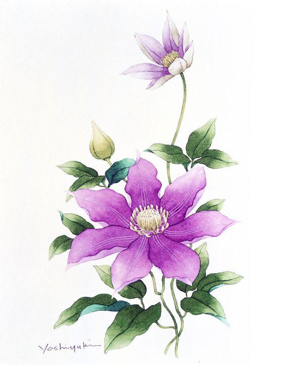 Gallery.ru / Фото #15 - Орхидеи и другие акварельные цветы Ibaragi Yoshiyuki…