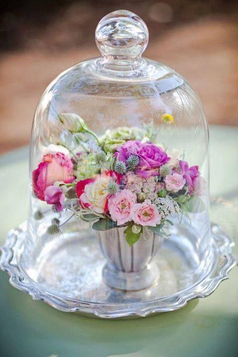 beautiful flowers under a glass cloche