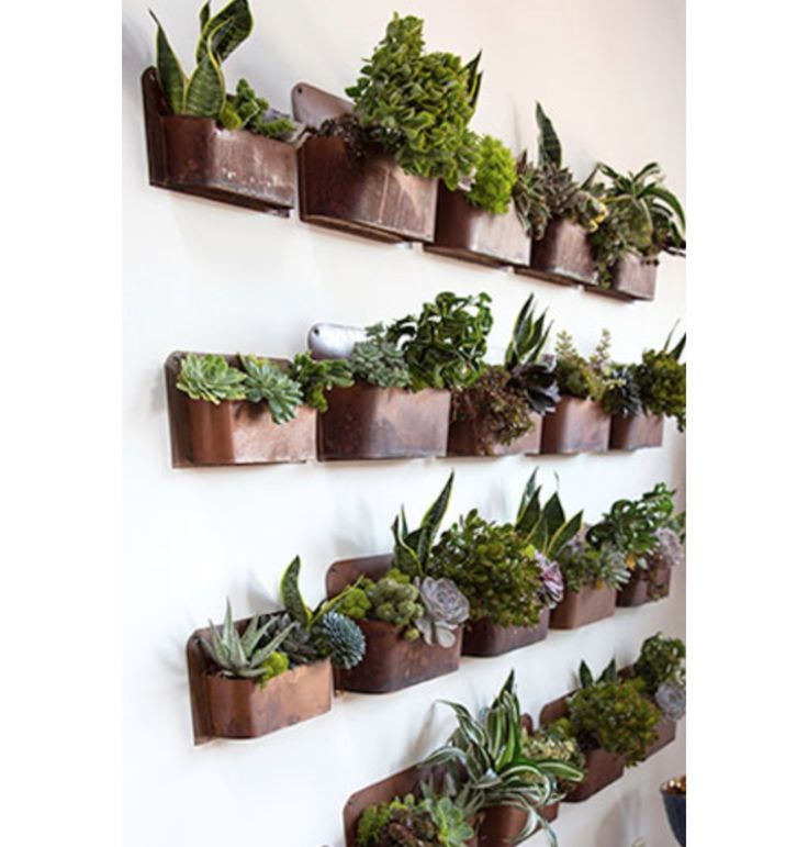 1000 ideas about wall mounted planters on pinterest. Black Bedroom Furniture Sets. Home Design Ideas