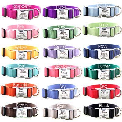 Metal Engraved Personalized Webbing Dog Collar *18 colors | Engraved Buckle Personalized Dog Collars | Designer Dog Collars | Shop Mimi Green