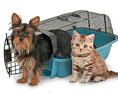 cage transport pour chat cage transport chat