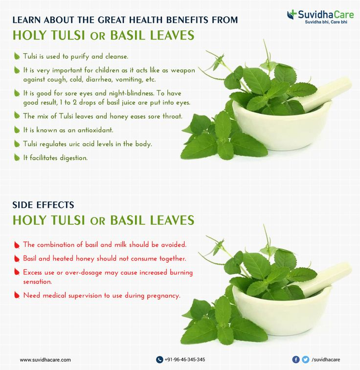 #Basil Leaves #Health_Benefits and #Side_Effects #Health_Tips #GoodFor_SoreEyes #Sore_Throat