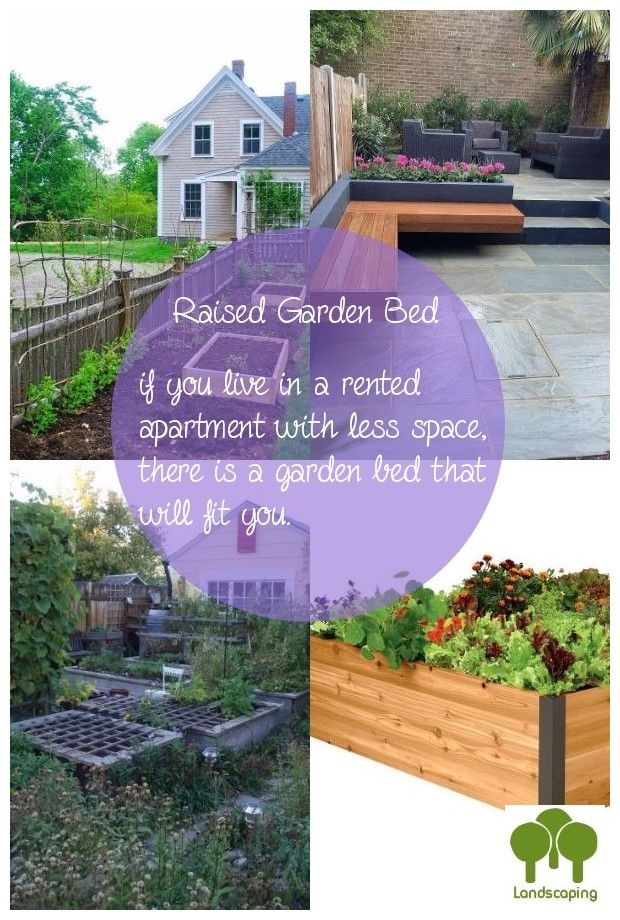Pick Out An Perfect Garden Bed In 2020 Backyard Garden Beds Garden Beds Raised Garden Beds