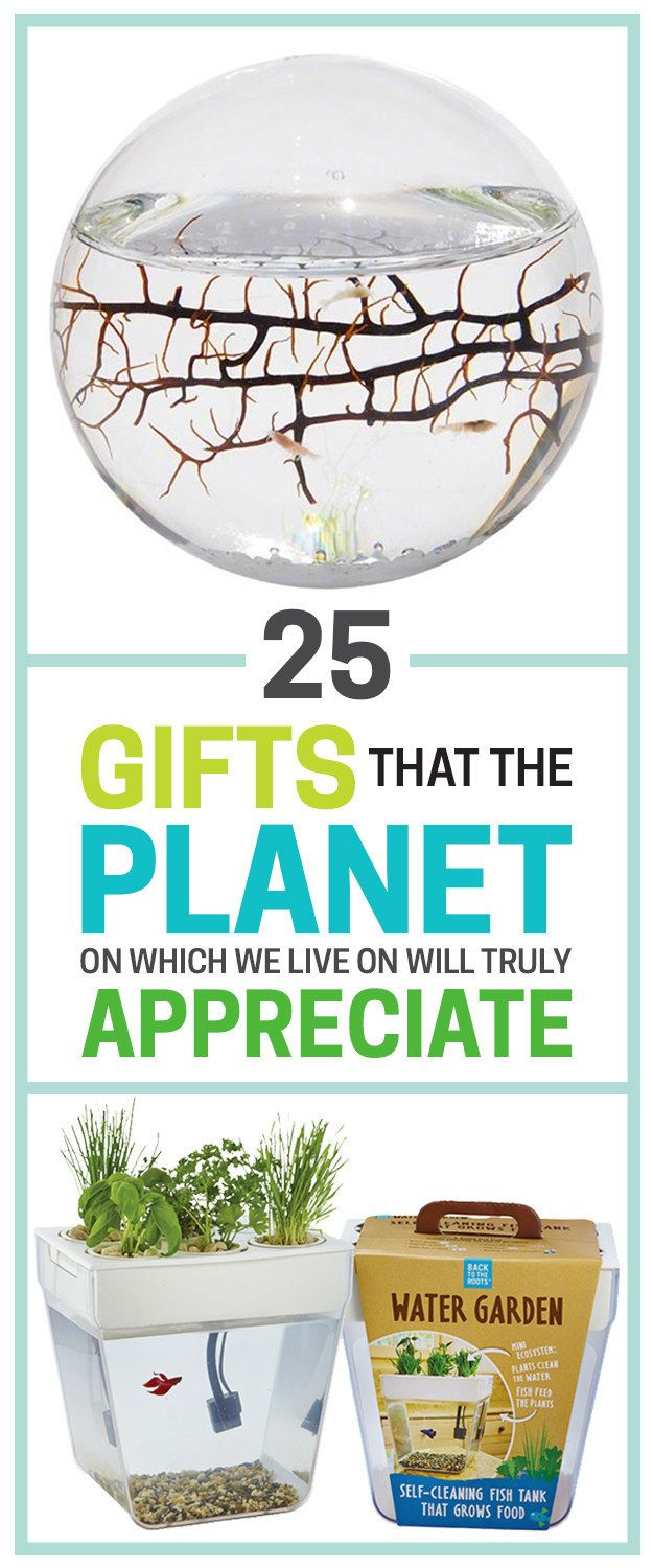 25 Gifts that will make you a better person because the planet we live on will truly appreciate it :)