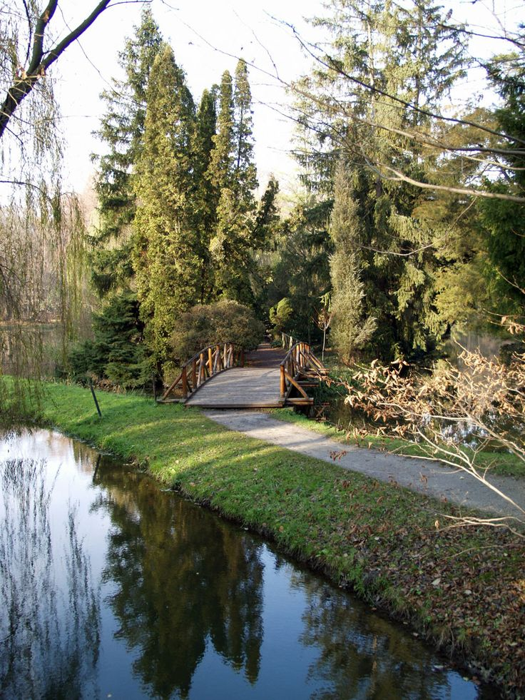 Water and Bridge